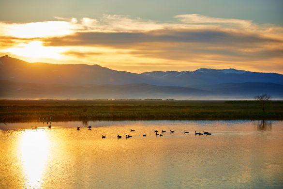 Bear Lake Wildlife Refuge, Near Montpelier, Idaho. Photo Credit: Idaho Tourism